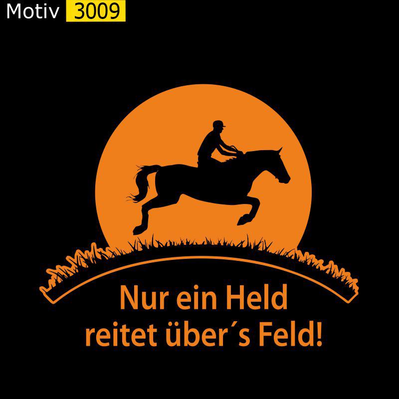 Motiv 3009 - Nur ein Held reitet übers Feld